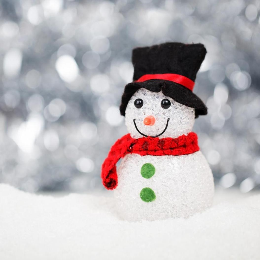 cold-snow-holiday-winter-40541.jpg